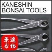 Kaneshin